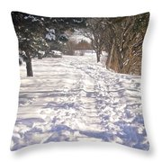 Second Day Of Spring Throw Pillow