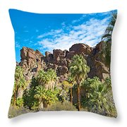 Second Largest Stand Of Fan Palms In The World In Andreas Canyon In Indian Canyons-ca Throw Pillow