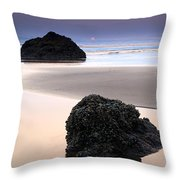 Second Rock From The Sun Throw Pillow