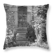 Secret Door Throw Pillow