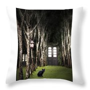 Secret Forest Dwelling Throw Pillow
