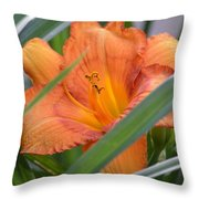 Secret Sunset - Lily Throw Pillow