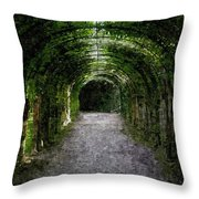 Secret Tunnel Throw Pillow