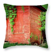 Secrets 2 Throw Pillow