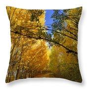 Autumn Secrets Throw Pillow