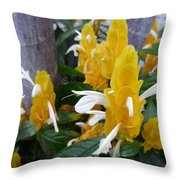 Secrets Of The Marching Shrimps Throw Pillow