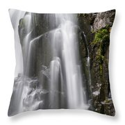 Section Of The Falls Throw Pillow