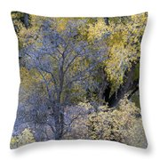 Sedona Fall Color Throw Pillow