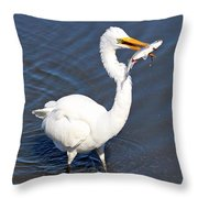 See My Catch Throw Pillow