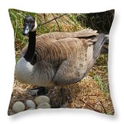 See My Eggs Throw Pillow