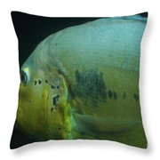 See You Later Throw Pillow