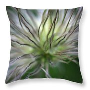 Seed Head Throw Pillow