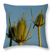 Seed Heads Reach For The Sky Throw Pillow