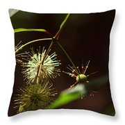Seeding Peace Throw Pillow by Sean Green