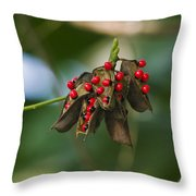 Seeds Of A Tropical Plant India Throw Pillow