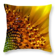 Seeds Of Sunshine Throw Pillow