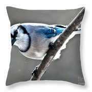 Seeing Blue Throw Pillow