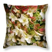 Seeing Double - Hydrangeas Throw Pillow