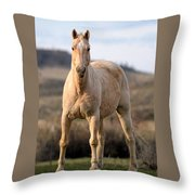 Seeing Eye-to-eye Throw Pillow