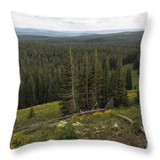 Seeing Forever - Yellowstone Throw Pillow