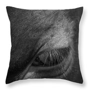 Seeing Into The Soul Throw Pillow