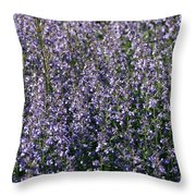 Seeing Lavender Throw Pillow