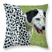 Seeing Spots Throw Pillow