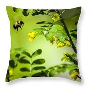 Seeking Nectar Throw Pillow