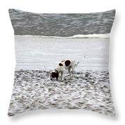 Seeking Sense Of Snow Throw Pillow