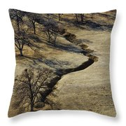 Seeking Shade Throw Pillow
