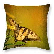 Seeking Sweetness 2 Throw Pillow