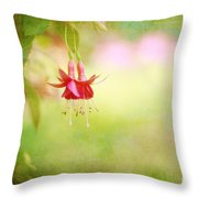 Seeking The Light Throw Pillow by Beve Brown-Clark Photography