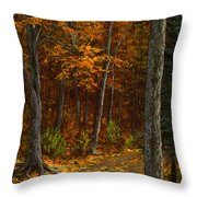 Seldom Used Throw Pillow