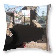 Self Portrait  Peeling Window Casa Grande Arizona 2004 Throw Pillow