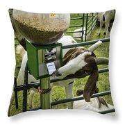 Self Serve Goat Throw Pillow