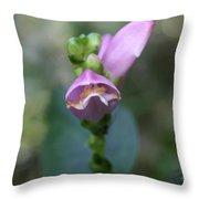 Selfheal Flower Throw Pillow