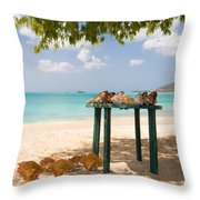 Selling Shells Throw Pillow
