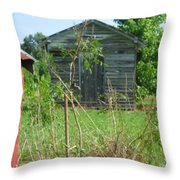 Selma Shed Throw Pillow