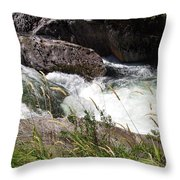 Selway Falls Throw Pillow