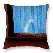 Sembach Window Throw Pillow