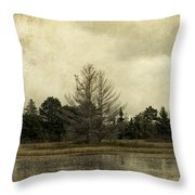 Seney Coffee With Cream Throw Pillow
