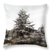 Seney Silver And Chocolate Throw Pillow