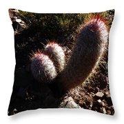 Senor Cacti Throw Pillow