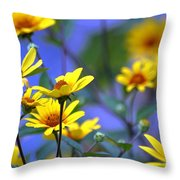 Sensational Summer Throw Pillow