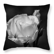 Sensory Satisfaction Throw Pillow