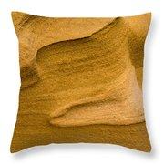 Sensual Sand Throw Pillow