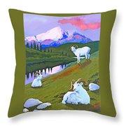 Sentinel Denali Throw Pillow