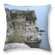 Sentinel On Duty Throw Pillow