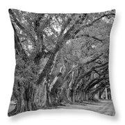 Sentinels Monochrome Throw Pillow