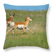 Separate Ways Throw Pillow